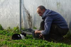 Fabrice explique à Erza comment bien récolter le mesclun.